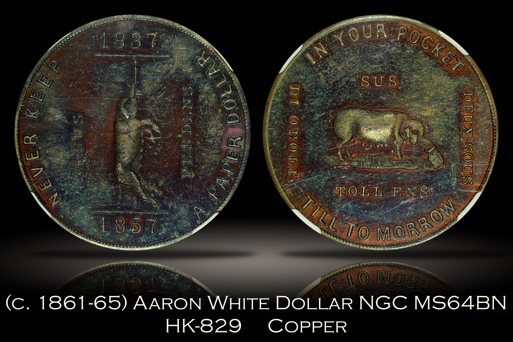 1861-65 Aaron White Satirical Dollar HK-829 NGC MS64BN