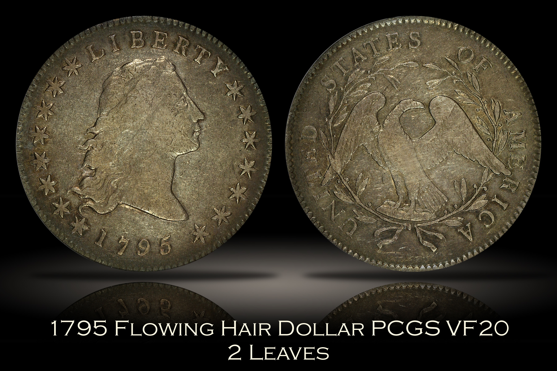 1795 Flowing Hair Dollar 2 Leaves PCGS VF20