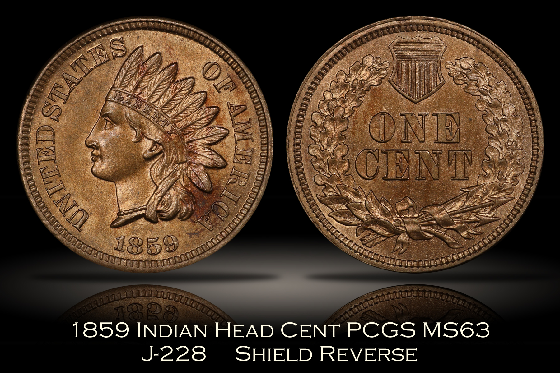 1859 Shield Reverse J-228 Indian Head Cent PCGS MS63