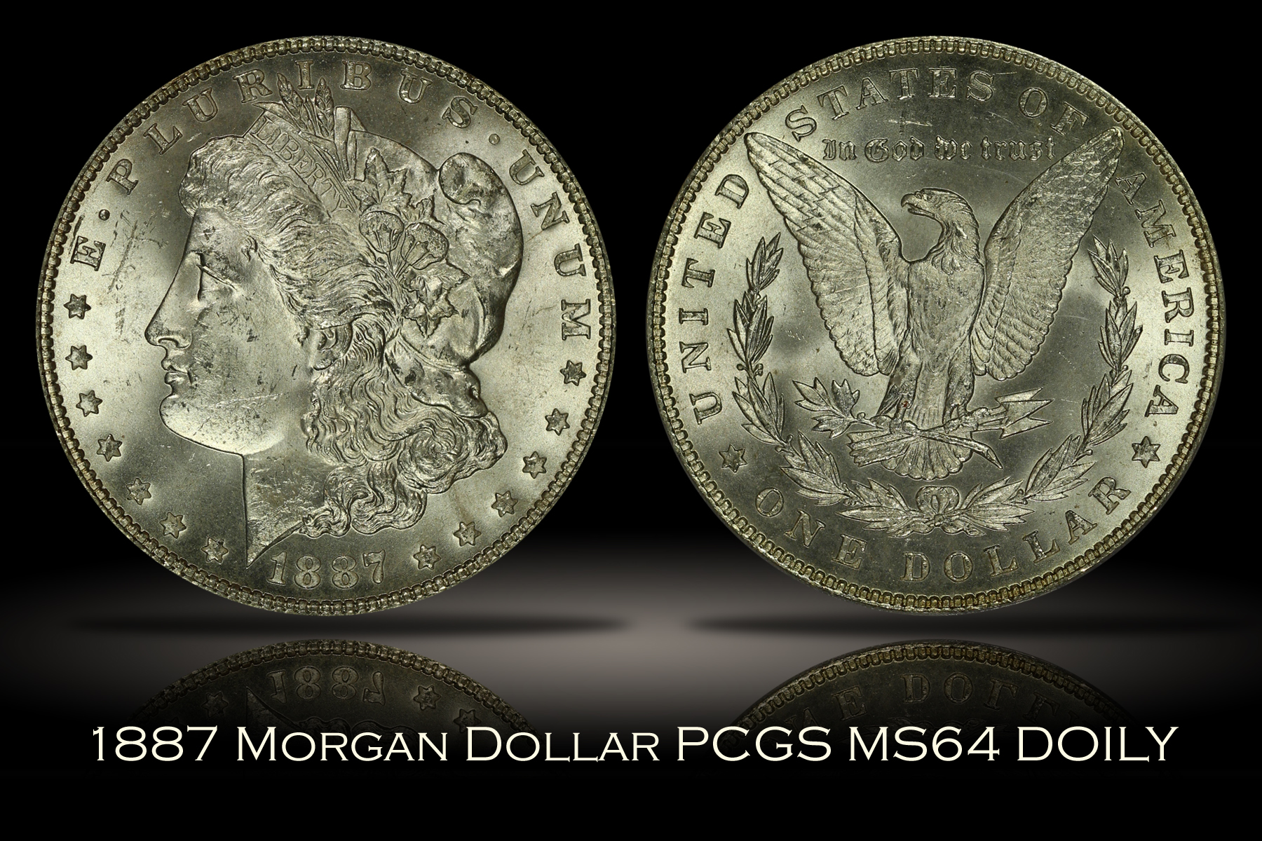1887 Morgan Dollar PCGS MS64 DOILY